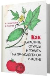 Как вырастить огурцы и томаты на приусадебном участке
