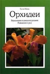 Орхидеи. Выращивание в домашних условиях. Разведение и уход