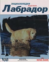 Энциклопедия лабрадор