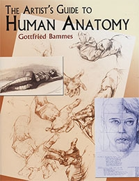 Gottfried Bammes - The Artist's Guide to Human Anatomy